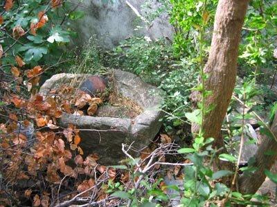 "<div ALIGN=""justify"">   Λεκάνη τραπέτου απο παλιό ελαιόμυλο κοντά στη βρύση του πλάτανου στο Μπορό.   </div>"